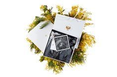 Шелковый платок «Индрик» Silk Scarves, Polaroid Film