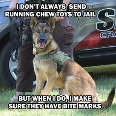 German Shepherd Military K-9 Hero! God Bless You!