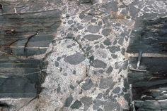 geology picture of felsic dike with mafic inclusions
