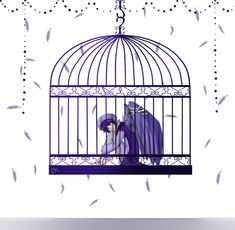 What I like about this image:  Wide cage, color themed, cage is hanging up, feathers are in the background, cool looking style