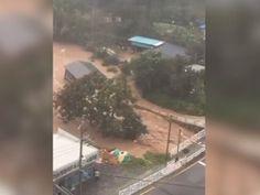 INC NEWS: Raw: Typhoon Causes Dramatic SKorea Flooding