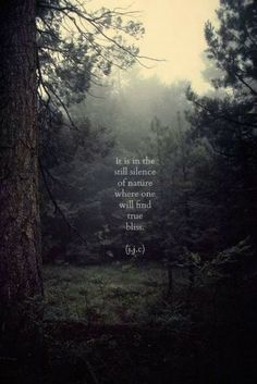 """In the still silence of nature, we find true bliss. What a beautiful inspirational quote. Here is another perspective of """"what lurks in the quiet?"""" https://www.pinchmeliving.com/what-lurks-in-the-quiet-meditation/ via @pinchmeliving"""