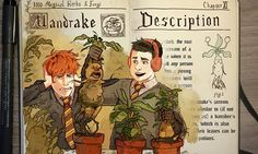 Amazing Illustrations Of Famous Magical Elements And Spells From Harry Potter - 9GAG