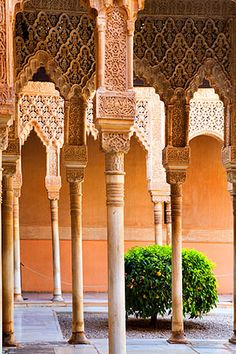 Patio de los Leones Alhambra Palace Granada Spain http://www.pinterest.com/atown3012/architecture-at-its-best/