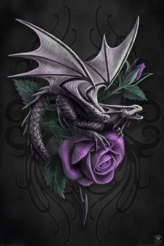 ✯   anne-stokes-dragon- rose -beauty