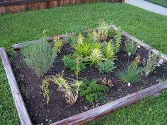 I love it -  HERB GARDEN / http://www.everydaygardening.net/herb-garden-128/