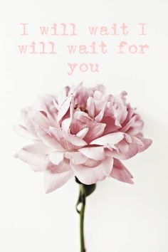 'I will wait' Mumford and sons