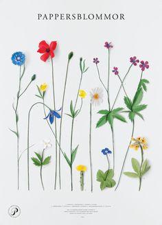 http://www.kurbits.nu/wp-content/uploads/2012/06/webb_affisch-papp-limited.jpg