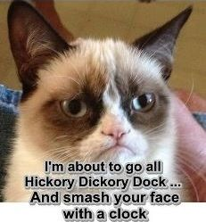 14 hilarious grumpy cat memes that will make you laugh! Grumpy Cat Quotes, Funny Grumpy Cat Memes, Funny Cats, Funny Animals, Funny Memes, Funny Quotes, Funniest Animals, Gato Grumpy, Grumpy Kitty