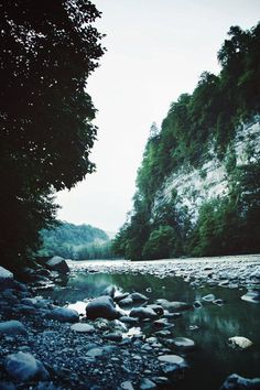 wilderness, water, nature,
