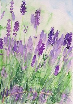 "watercolor paintings of lavender | Lavender watercolor. ""Parfum de la Provence"" by Andrea Fettweis"