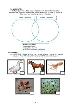 Sexual Reproduction in Animal (Internal and External Fertilization Science Lesson Plans, Science Experiments Kids, Science Lessons, Lesson Plan Sample, Social Issues, Rubrics, Fertility, How To Plan, Mars