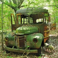 Abandoned Buildings, Abandoned Houses, Abandoned Places, Abandoned Vehicles, Vintage Trucks, Old Trucks, Rust In Peace, Green School, Rusty Cars