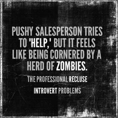 Introvert Problems, The Professional Recluse