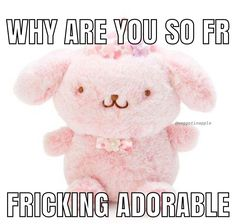 Cute Love Memes, Cute Messages, Meme Template, Wholesome Memes, Stupid Memes, Mood Pics, Reaction Pictures, Sanrio, Relationship Goals
