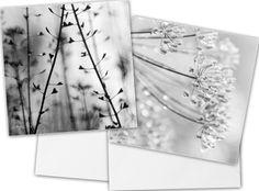 2  cartes carrées de photo fleur noir et blanc de COULEURS DE NATURE sur DaWanda.com