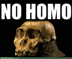 Just under two million years old, Australopithecus sediba has attracted attention ever since its 2008 discovery because of its mix of ancient and modern traits. It's been hailed as the direct ancestor of the Homo genus. University Of The Witwatersrand, Human Fossils, Early Humans, Archaeology News, Human Evolution, Archaeological Discoveries, Oeuvre D'art, Les Oeuvres, A Team