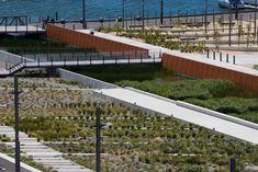 Waitangi-02-GravingDock_EcoRemants_Neil-Price « Landscape Architecture Works | Landezine