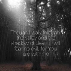 Favorite Bible verse Psalms 23:4 (part of the verse)