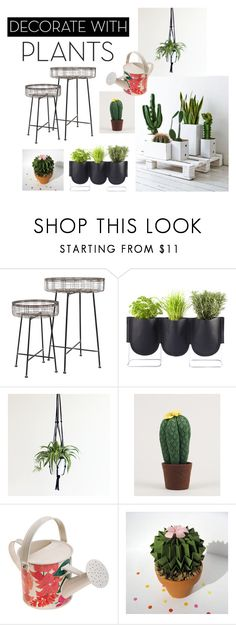 """""""Untitled #12"""" by meetminion ❤ liked on Polyvore featuring interior, interiors, interior design, home, home decor, interior decorating, Authentics, Eleanor Bolton, Caroline Gardner and plants"""