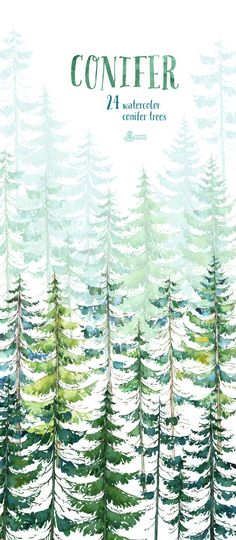 Conifer Trees. Watercolor pine spruce forest wood by OctopusArtis
