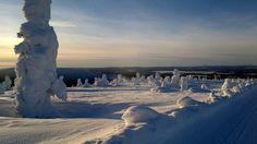 Levi ,Lapland, Finland