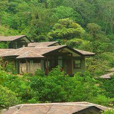 Beautiful setting at El Silencio Lodge in the cloud forest!  @ElSilencioLodge #costarica