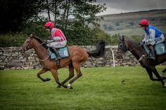 Horses racing at Cartmel Racecourse, Cartmel, Cumbria