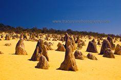 The Pinnacles, Nambung National Park, WA - www.tracyryanphotography.com
