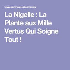 La Nigelle : La Plante aux Mille Vertus Qui Soigne Tout !