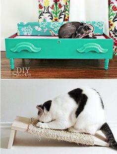 Decoração para quem tem pets (cachorros e gatos) e q você mesma(o) pode fazer!