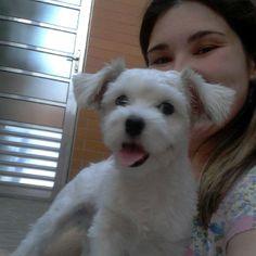 o cachorrinho e a menina