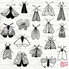 Moth Doodle Clipart – 27 Hand Drawn Moths Cliparts – Bugs Logo Art – Bugs Logo Elements – Moths Illustration – – The Best Ideas Dragonfly Clipart, Painting & Drawing, Dog Pen, Hand Illustration, Doodle Art, Doodle Frames, How To Draw Hands, How To Draw Bugs, Art Drawings