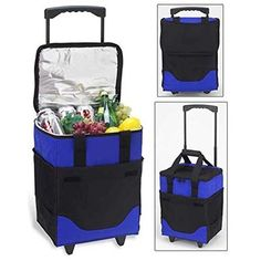Picnic Ascot 395RB 32 Can Collapsible Rolling Cooler Royal Blue RMG4H4E54 E4R46T32561845 * You can get more details by clicking on the image. (This is an affiliate link) #GardeningTools