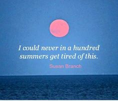 endless summer ♥