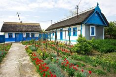 Case traditionale in Delta Dunarii, #Colorful #Facade #DanubeDelta, #Fishermen'sVillage Polish Folk Art, Vernacular Architecture, Old Houses, Tiny Houses, Cornwall, Fields, Nostalgia, Cottage, Exterior