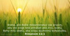 Bible verse of the day God Is, Biblia Online, Daily Bible, Verse Of The Day, Romans, Bible Verses, Prayers, Sisters, Texts