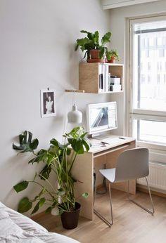 Plantas de interiores, moda, tudo em tom verde