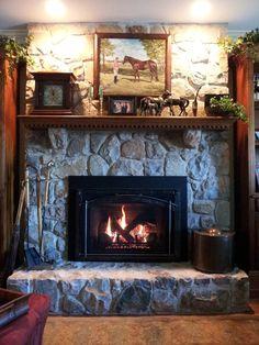 Heat n Glo gas fireplace insert