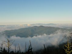 Clingmans Dome is a must see!