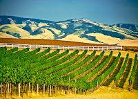 Sean Sullivan - Washington Wine Report: Walla Walla Valley Report 2012 Part V