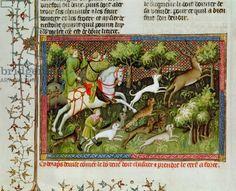Ms Fr 616 fol.77 Stag Hunting, from the Livre de la Chasse by Gaston Phebus de Foix (1331-91) (vellum)