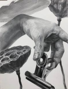 Graphite Art, Graphite Drawings, Ap Drawing, Technical Drawing, Realistic Pencil Drawings, Anatomy For Artists, Hyperrealism, Sketchbook Inspiration, Hand Art