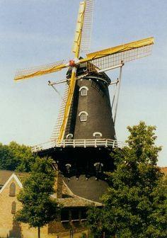 Molen de Kroon te Arnhem.Stellingmolen uit 1849. Burgers verplaatste in 1870 de molen naar het toen nog niet bebouwde Klarendal, vandaar ook Klarendalse molen genoemd. De molen kreeg fokwieken en had ooit 7 koppels maalstenen. Heeft vele rampen gekend maar maalt weer sinds 1993.