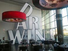 Darwin restaurant Lisbon