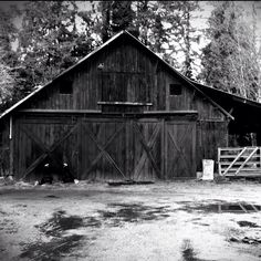A dilapidated old barn.