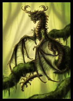 Earth Dragon by ~Naira-Wolf-Satyr on deviantART Mythological Creatures, Fantasy Creatures, Chromatic Dragon, Dragon Artwork, Fantasy Dragon, White Dragon, Mother Of Dragons, Character Portraits, Beautiful Creatures