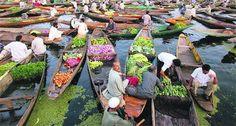 Fresh vegetables,Srinagar