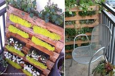 Vintage Finds: New Uses for Old Things | Wooden Pallets.  I'm going to be moving some plants around tomorrow so I can try this. Have tons of sedum, creeping jenny, nasturtium. I forget what I plant year to year, and it's a bit overgrown. This will be great.