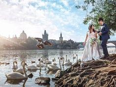 Pre-wedding in Prague Prague, Photography, Wedding, Valentines Day Weddings, Photograph, Fotografie, Photoshoot, Weddings, Marriage